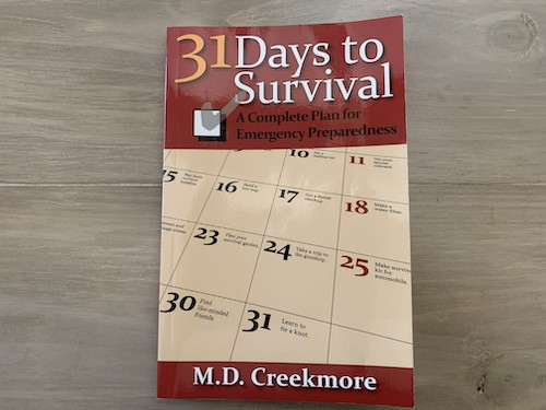 31 Days to Survival Review